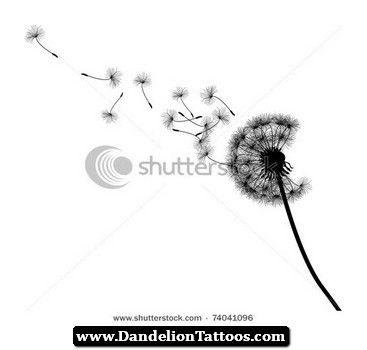 Dandelion tattoo design illustrations - photo#3