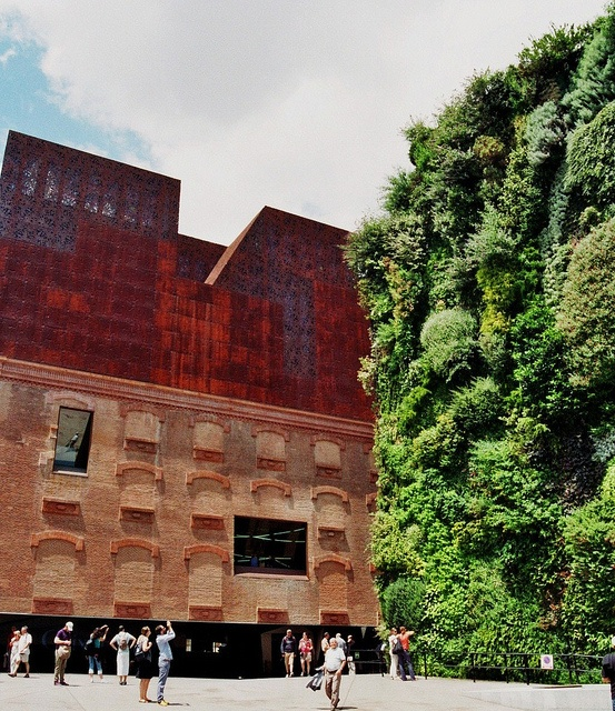 16 best fachada vegetal bogota hotel b3 images on for Jardin vertical madrid