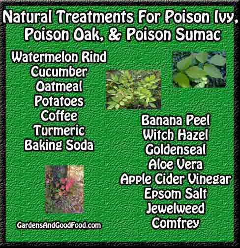 NATURAL TREATMENT FOR POISON IVY