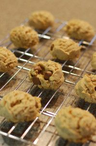 Oatmeal, Peanut Butter & Chocolate Chunk Cookies! So Delicious!