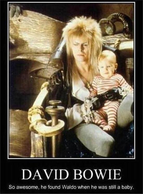 David Bowie Meme Redhouse Rocks Pinterest Classic