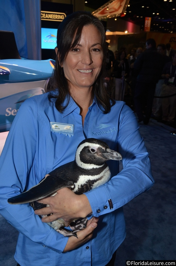 SeaWorld's Antarctica: Empire of the Penguin