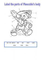 English Worksheets: Pinocchio´s body