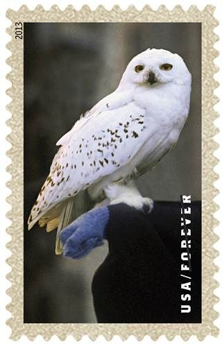 Hedwig stamp, part of a Harry Potter collection coming soon to the USPS