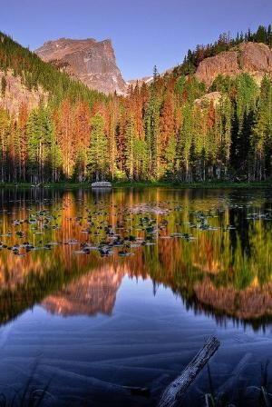 Нимфа озеро, скалистые горы, национальный парк, штат Колорадо, Розали