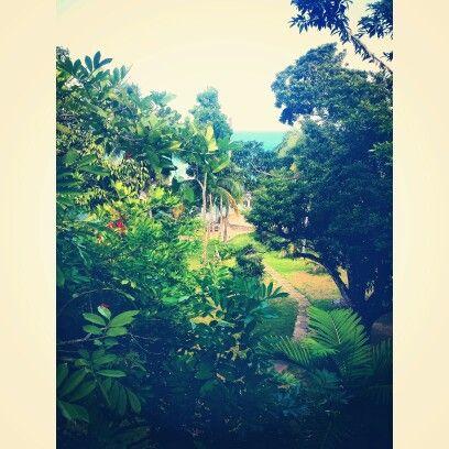 Jamaica land we love.  https://instagram.com/holla_jazzy/