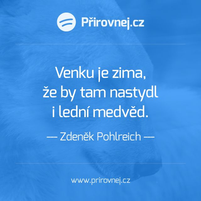 """""""Venku je zima, že by tam nastydl i lední medvěd."""" #ZdenekPohlreich #anosefe"""