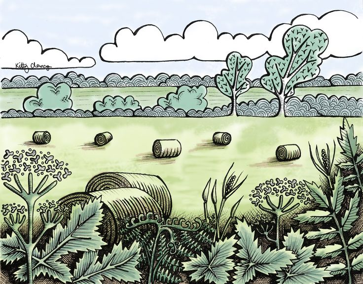 An illustration of hay bales in the Irish countryside
