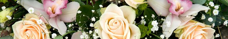 FTD Flowers Coupons, Promo Codes, Coupon Codes & Cash Back - 2016