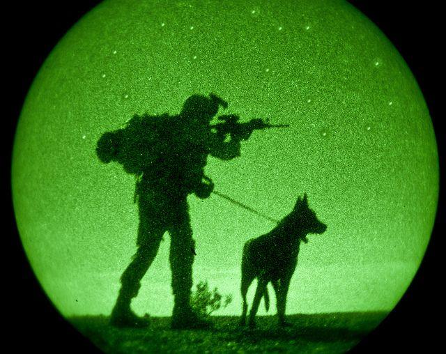 Look, Boy (U.S. Marine Corps photo by Cpl. Aaron Diamant)