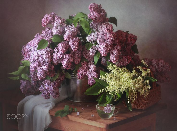 With bouquets of spring - null