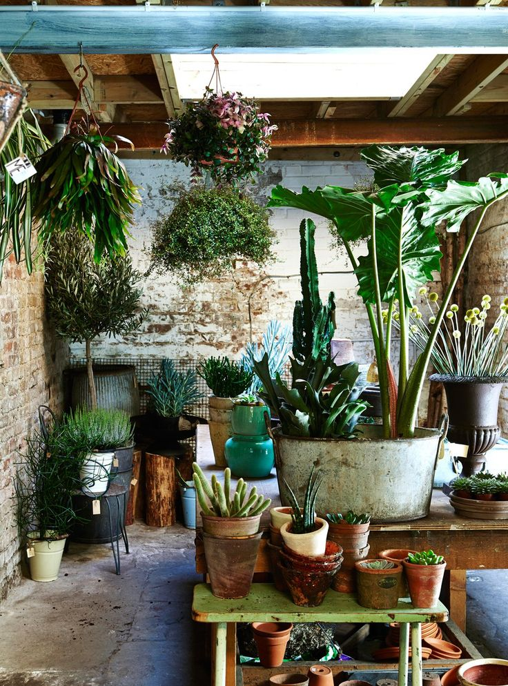 Tiny Home Designs: 7 Easy Ways To Create Botanical Style At Home