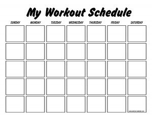 This site has blank and pre-made work out schedules for several different programs. Brazil Butt Lift, Insanity, P90X, etc.