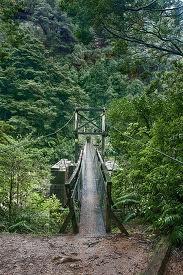 swing bridge at charming creek