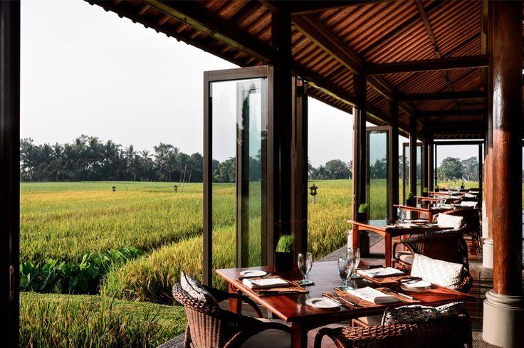 The Restaurant overlooking the rice paddies at The Chedi Club at Tanah Gajah #Ubud #Bali