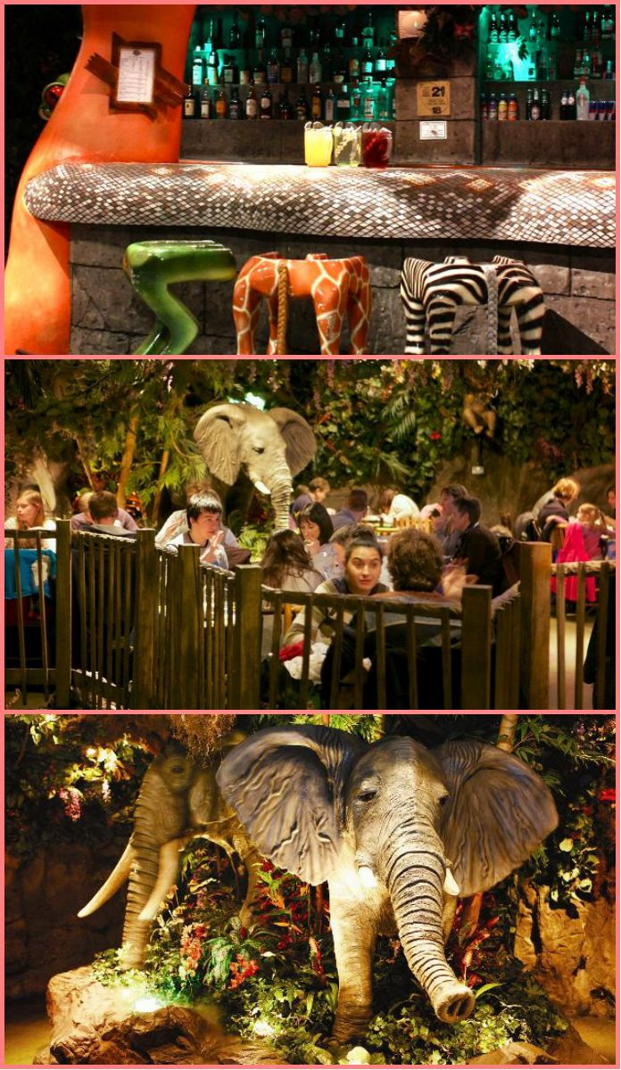 Looking for the perfect place for a Mother's Day lunch? London won't let you down. Try the quirky Rainforest Cafe in Central London. Perfect, not just for mum, but for the whole family.