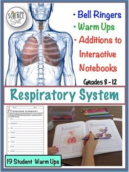 biology grade 11 respiratory system Eleventh grade (grade 11) biology questions you can create printable tests and worksheets from these grade 11 biology questions select one or more questions using the checkboxes above each question then click the add selected questions  the central nervous system.
