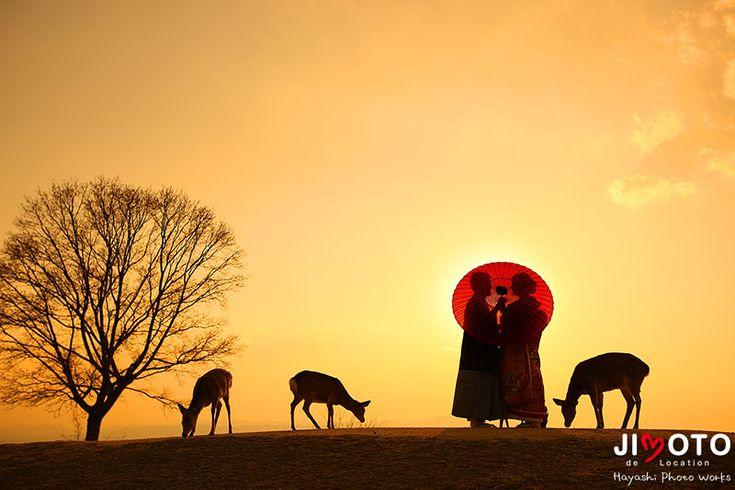 奈良ロケーション和装前撮り 若草山で夕陽と鹿と|Hayashi Photo Works