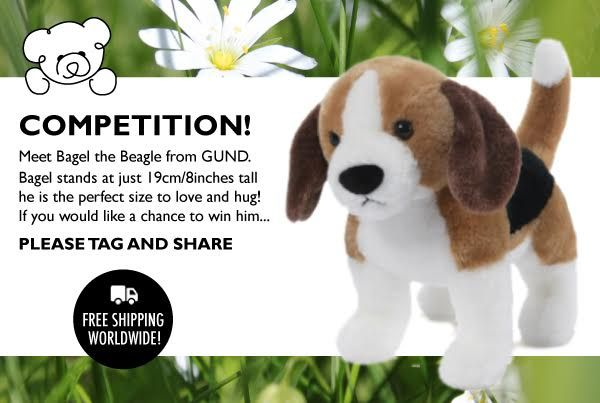 Huggable Lovable Bagel the GUND beagle to be won! Enter Teddy Bear Treasures Facebook Competition.. for your chance to win and take him to his new forever home!
