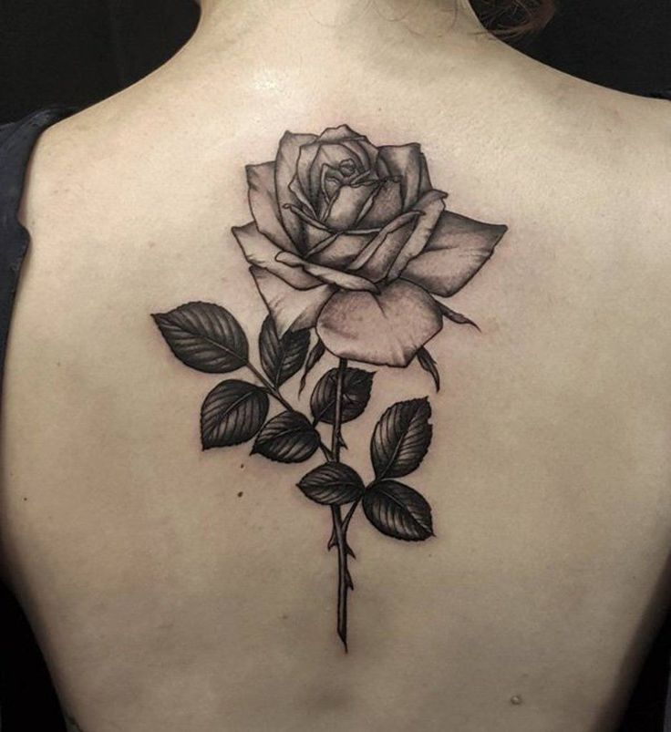 Simple Singel Black Rose Back Tattoo for Women - MyBodiArt.com