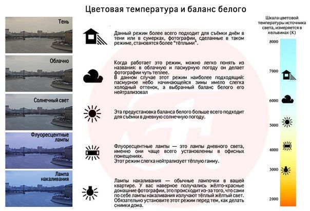 Фото шпаргалки (образование) | 45 фотографий | ВКонтакте