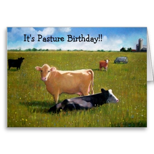 Cows: Funny Belated Birthday: Pasture Birthday Greeting Cards