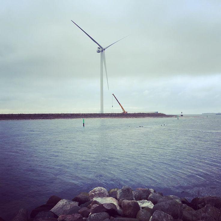 #odense #munkebo #vind #vindmølle #vestas #vestaswind #windmill #windmills #iphone #apple #vand #ocean#odensefjord #winter #greenenergy #grønenergi