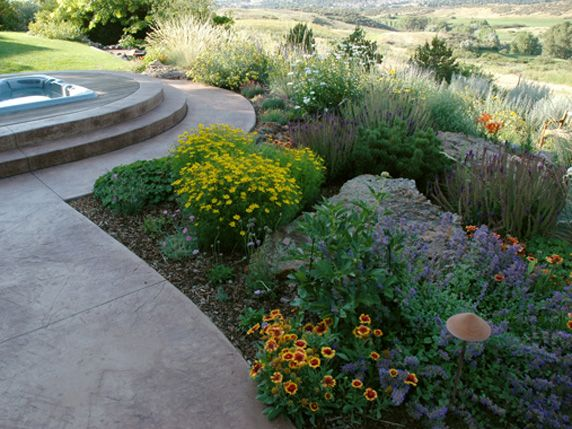 152 best images about colorado landscaping on pinterest for Easy care landscaping ideas