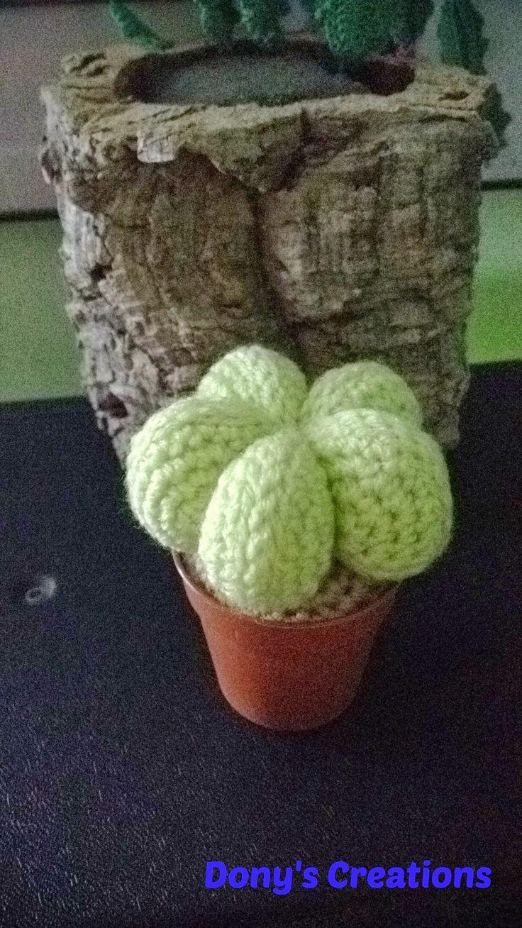 Dony's Creations by Donatella Saralli : Cactus Cappello del Vescovo _ pattern free italiano