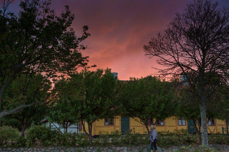 Lodsoldermandsgården ved Rørvig havn i solnedgang