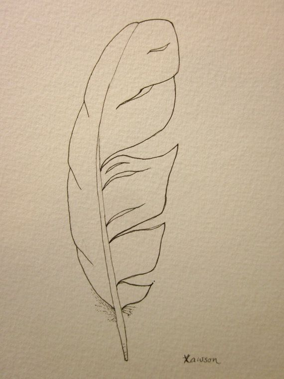Line Drawing Feather : Sea bird feather original ink drawing line drawings