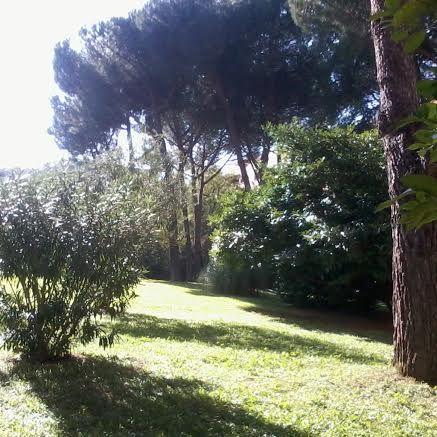 November in #Rome - #Autumn in my #Garden | #MyInstagramPhoto #igersitalia #igers #igersRoma