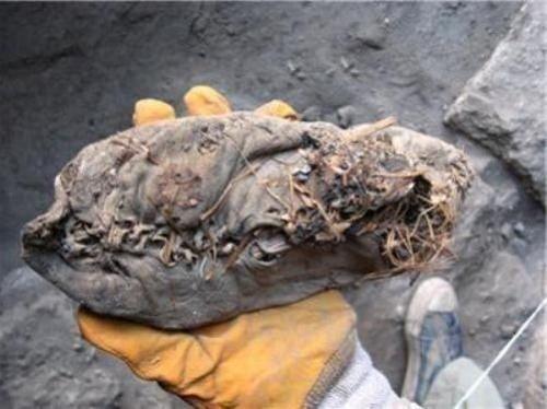 Encontrado en Armenia, zapato cuero 5500 años edad es más antiguo del mundo. Hecho de una sola pieza de piel de vaca, conservación es perfecto. El nivel de detalle es preservado: la antigua hierba se encuentra dentro de la zapatilla fue utilizado probablemente en busca de calor. Incluso sus cordones de los zapatos se encuentran aún en estado casi prístino.