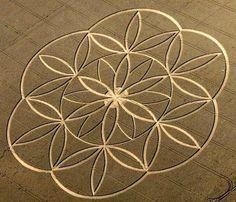 Geometría sagrada: la flor de la vida                                                                                                                                                      Más
