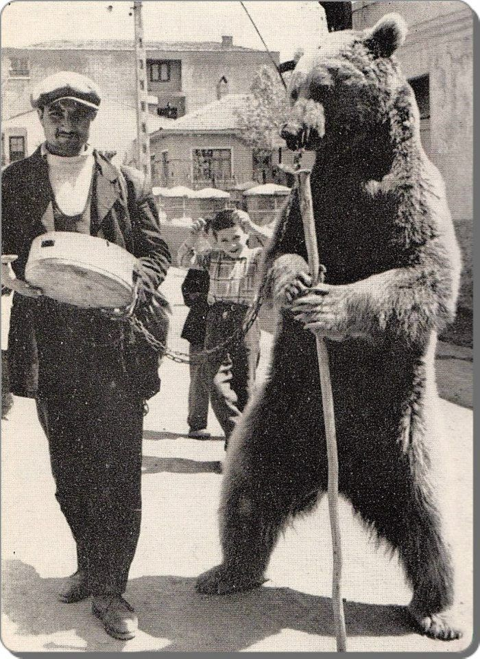AYI OYNATICI (making a bear dance).  Picture from the 1950s.  Bear leading was banned in Turkey around 1995.