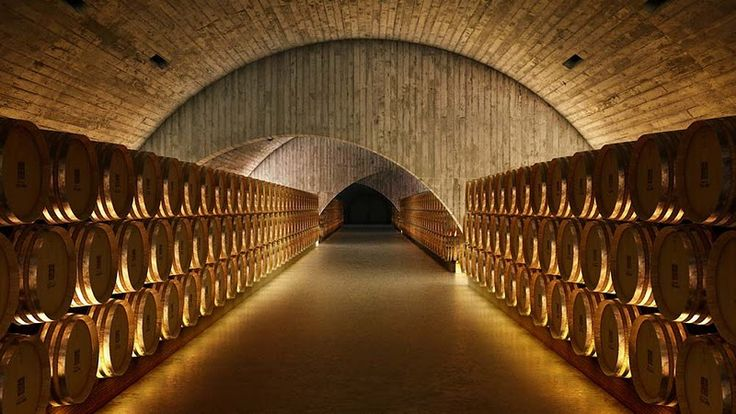 Quinta do Vallado - Winery and barriques cellar, Vilarinho dos Freires, Portugal (2011) by Guedes + DeCampos |