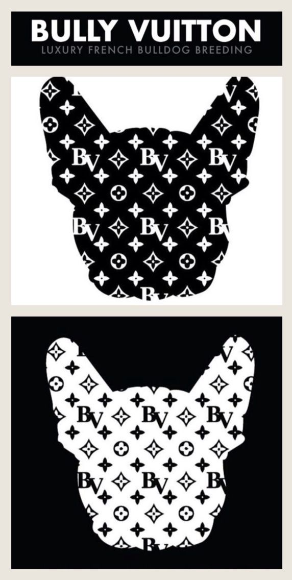 'Bully Vuitton', the Luxury Brand for French Bulldogs Breeding.