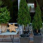Bäume aus Tannenzweigen binden