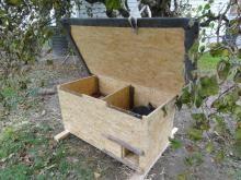 Bau Kaninchenstall