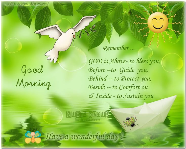 Good Morning All My Dear Friends : Best ideas about good morning my loves on pinterest