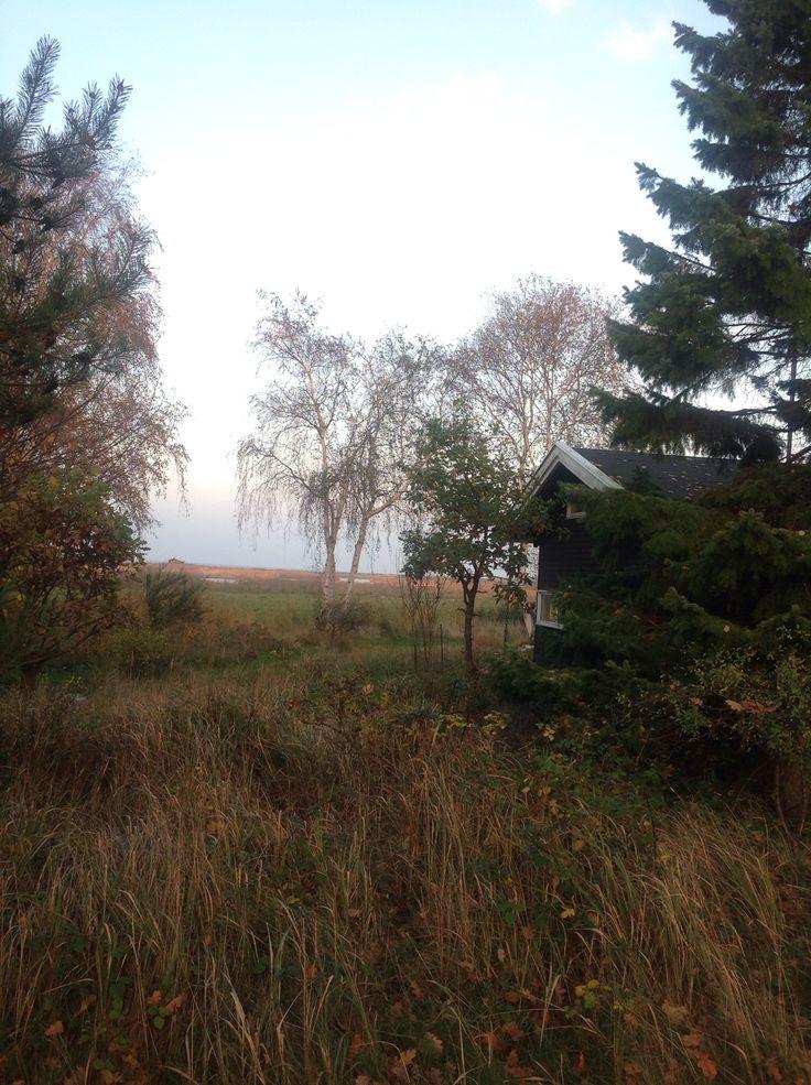 Efterår i Rørvig