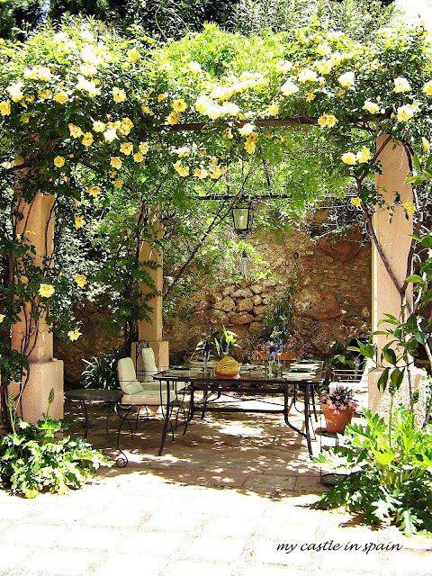 Climbing roses..backyard patio and pergola design ideas and decor