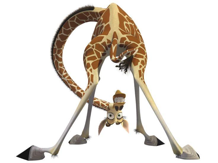 16 best insipired by madagascar ideas images on pinterest - Girafe madagascar ...