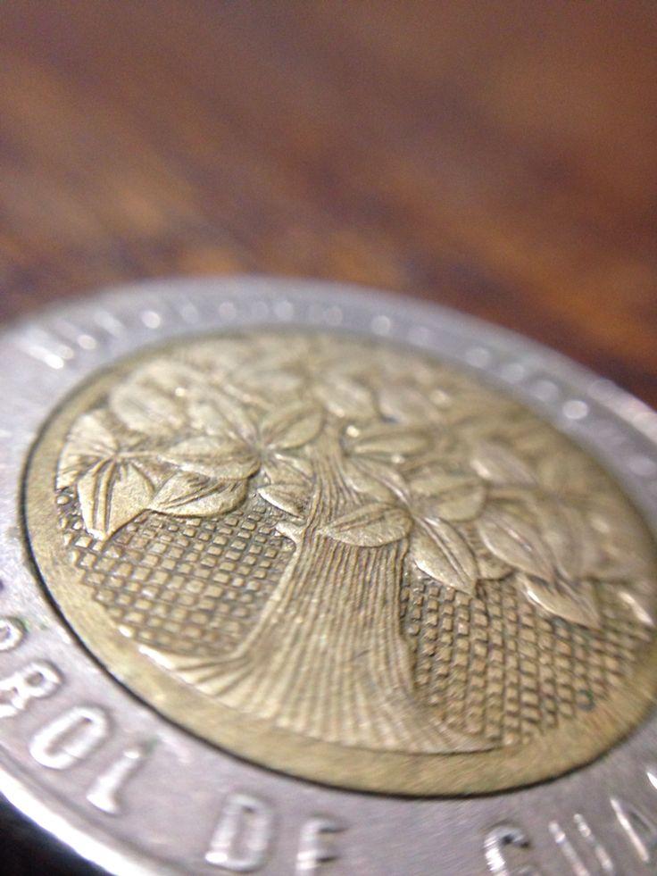 Textura Árbol Guacari 500 pesos Colombianos