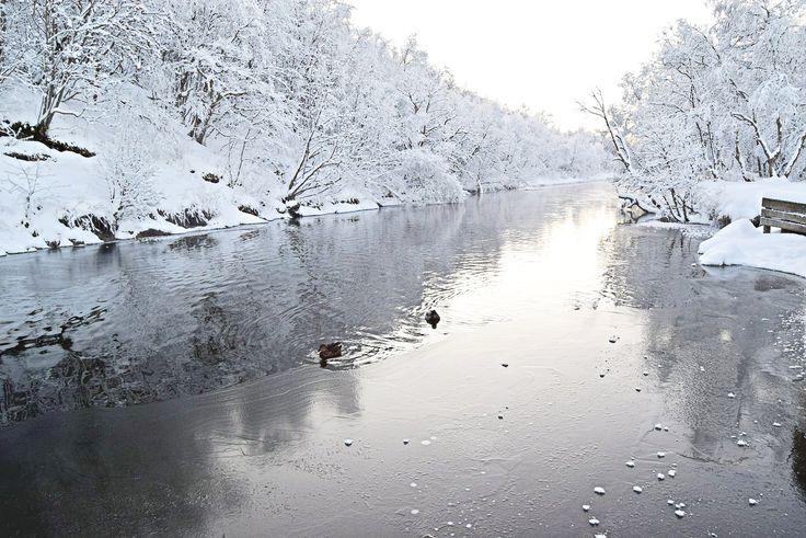 Beautiful winter landscape by Futelva in Bodø