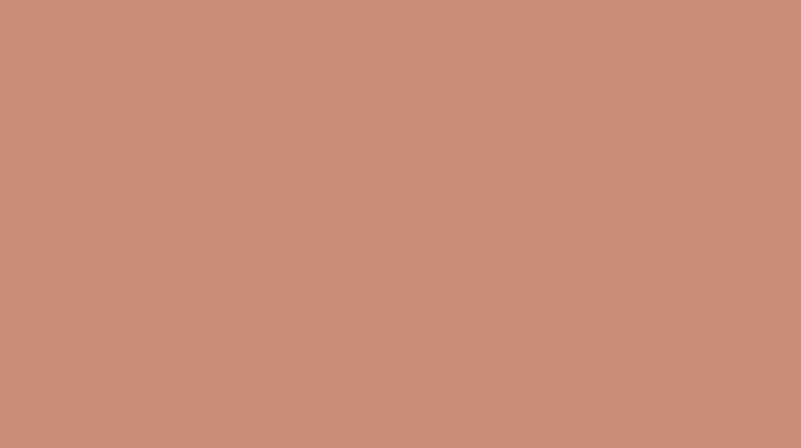 Kleur van het jaar 2015 - KOPER ORANJE - Overige producten - Flexa
