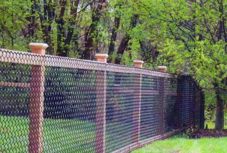 Colored-Chain-Link-Fence-Ideas