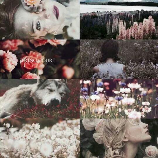 Tüskék és rózsák udvara