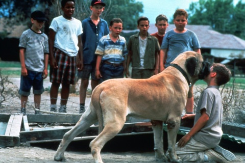 20 Things We Learned About The Sandlot After Talking With Scotty Smalls