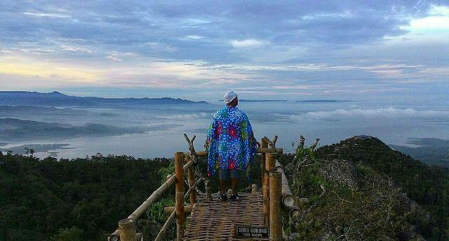soko gunung wonogiri